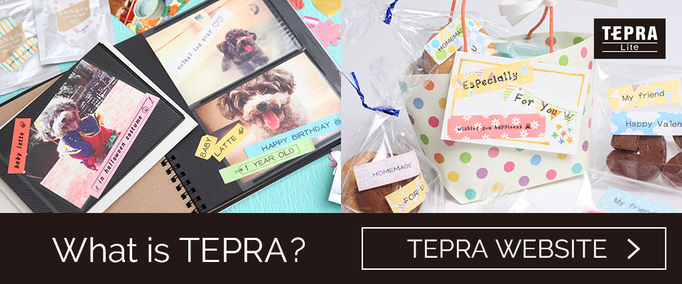 What is TEPRA?